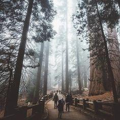 INFINITY TONES Present  : @jason.california Be a part of #InfinityTones  Alliance :  @captureabandon @whoiteam @themasked_ones @aestheticshot @litetones @imaginatones @spectrelife  #captureabandon #whoiteam #themaskedones #aestheticshot #litetones #imaginatones #spectrelife by infinitytones