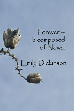"Emily Dickinson Quotes On Writing | Forever – is composed of Nows."" – Emily Dickinson – On ..."