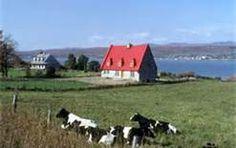 Ile D'Orléans - Bing Images Cap Breton, Tour, Bing Images, Travel, Paint