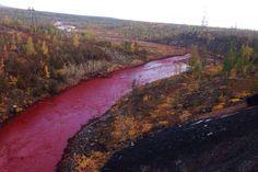 Rússia abre investigações após rio ficar vermelho