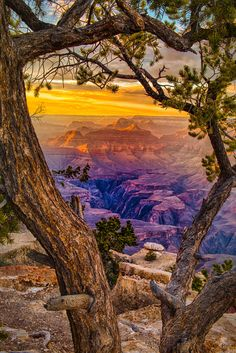 View from Yaki Point on the South Rim of the Grand Canyon in Arizona 💛💜🇺🇸 - If you want to be featured tag us or use ♻️ - Amazing Photography, Landscape Photography, Nature Photography, Beautiful World, Beautiful Places, Beautiful Pictures, Grand Canyon National Park, National Parks, Nature Sauvage