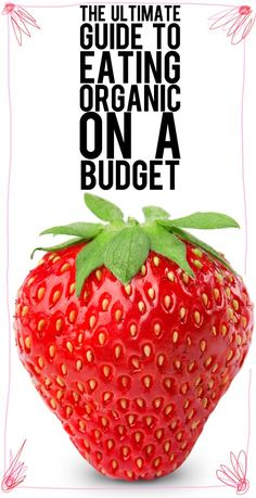 """Ultimate Guide to Eating Organic on a Budget...now do they have one of these """"how to eat organic without him noticing"""""""