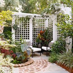 The wooden pergola is a good solution to add beauty to your garden. If you are not ready to spend thousands of dollars for building a cozy pergola then you may devise new strategies of trying out something different so that you can re Privacy Trellis, Patio Trellis, Patio Privacy Screen, Wood Trellis, Diy Trellis, Arbors Trellis, Backyard Privacy, Backyard Fences, Backyard Landscaping