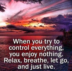 When you try to control everything, you enjoy nothing. Relax, breathe, let go, and just live. #quotes #motivation #inspiration