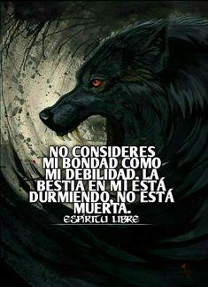 Mi Images, Shadow Wolf, Rock Argentino, Wolf Life, Quotes En Espanol, Dark Quotes, Animal Quotes, Spanish Quotes, Werewolf