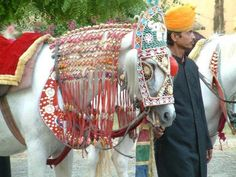 Jaipur, the pink capital city of Rajasthan