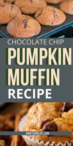 Looking for a kid-friendly pumpkin muffin recipe? Try this pumpkin chocolate chip muffin recipe. It�s great for a quick breakfast or a lunchbox surprise. #chocolatechippumpkinmuffins Yummy Drinks, Yummy Food, Delicious Recipes, Pumpkin Muffin Recipes, Pumpkin Chocolate Chip Muffins, Healthy Pumpkin, Breakfast Recipes, Breakfast Ideas, Fall Recipes