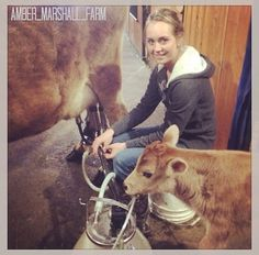 Heartland    Amber Marshall