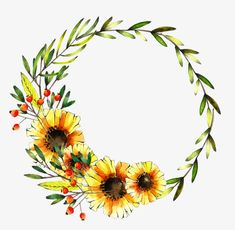 wreath, Watercolor, Daisy, Bright Yellow PNG Image and Clipart Wreath Watercolor, Watercolor Background, Watercolor Flowers, Wreath Tattoo, Sunflower Drawing, Circle Tattoos, Wreath Drawing, Bullet Journal Art, Sunflower Wreaths