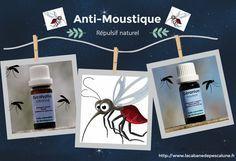 Faites fuir les moustiques ! Une astuce très simple pour faire fuir Mesdames les moustiques
