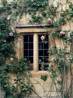 Stanton Manor House // Cotswolds, England