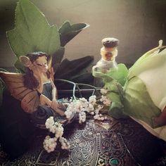 Fairies spies on us.... #fairies #morigirl