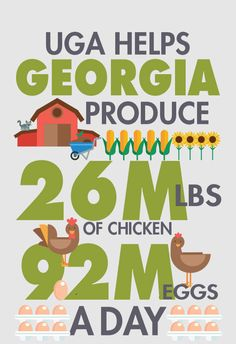 Did you know that Georgia is the leading poultry producing state in the nation?