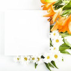 Flower Background Wallpaper, Flower Backgrounds, Paper Background, Tumblr Wallpaper, Iphone Wallpaper, Boarders And Frames, Instagram Frame Template, Instagram Background, Birthday Frames