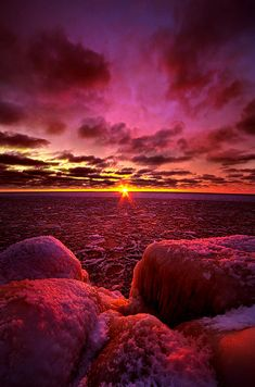 love at first light ... phil-koch
