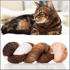 Expression Fiber Arts, Inc. - TABBY CAT 'RESILIENT' SUPERWASH MERINO SOCK, $24.00 (http://www.expressionfiberarts.com/products/tabby-cat-resilient-superwash-merino-sock.html)