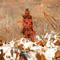 Red Himba Lady Im Norden Namibias lebt das Volk der Himbas. Viele leben von Vieh- und Ziegenzucht und sind grösstenteils Selbsversorger!…