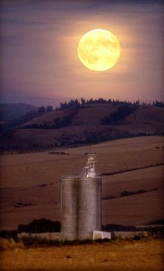 Walla Walla, Washington, USA