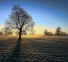 "500px / Photo ""Chilly morn"" by Ian Pinn"