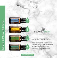Melaleuca, Terra Oils, Diffuser, Nasal Congestion, Essential Oil Blends, Flu, Cleaning