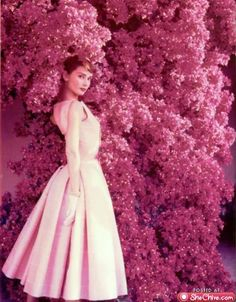 Gorgeous, beautiful, lovely Audrey