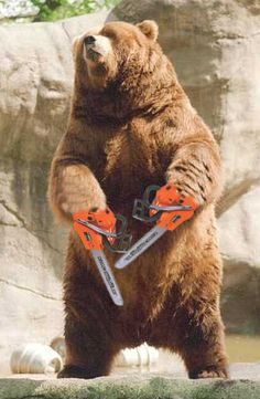 Which is scarier? Bear with chainsaws or 4-inch claws?