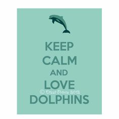 Dolphin Poster Keep Calm and Love Dolphins