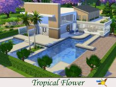 Tropical Flower by Evi at TSR