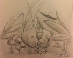 """Forgotten"" sketch by Jackie Leong. I came across a small bird's egg. A beautiful sky blue colour, slightly bigger than a pigeon egg. It was broken just as the sketch looks, in the grass in my garden. I felt so sad to see it like that. I want that little bird who didn't make it, to be remembered."
