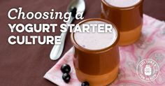 Choosing A Yogurt Starter Culture