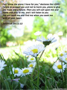 Jer. 29:11-13