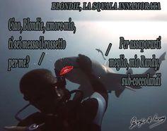 Blondie, la squala innamorata