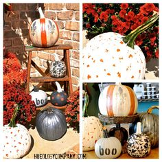 Pumpkin painted with Chalk Paint™ by MJ of Hueology
