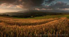 Fields and mountains. #Poland www.simplycarpathians.com