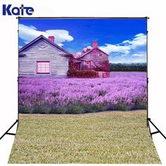29.99$  Watch now - http://alilm2.shopchina.info/1/go.php?t=32743891789 - 300CM*200CM(about 10ft*6.5ft) fundo Chalet flowers blue sky3D baby photography backdrop background LK 1881  #magazine