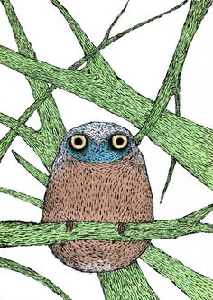 Illustration of an Owl | Artist: Dmitry Geller | Moscow, Russia | More owl art through the link...