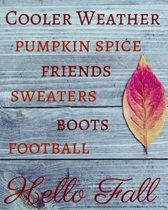 It's right around the corner!  Who's ready for fall?! #confessionsofafurniturehoarder #countrysideheirlooms #yardsalediva #fleamarketqueen #fall2016 #notreadyforthis