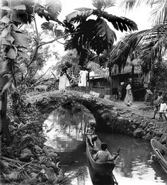 In the heart of a native village, typical of life in the tropics. Philippine…