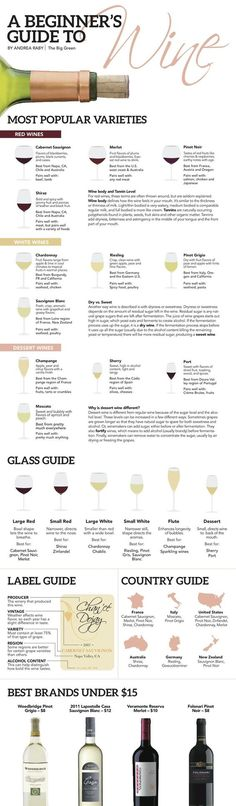 All you need to know about wines for beginners.A Beginner's Guide to Wine - Andrea Raby The Big Green Guide Vin, Wine Guide, Wine Tasting Party, Wine Parties, Wein Poster, Wine Infographic, Wine Education, In Vino Veritas, Wine Cheese