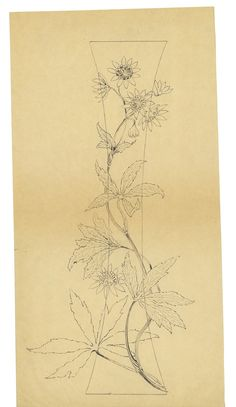 Drawing for vase with #flowers overlaid, Emile Galle, [1880-1904], CMGL 139142 | Rakow Research Library #colorourcollections #coloringpages