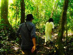 Caminata por la Selva Lacandona