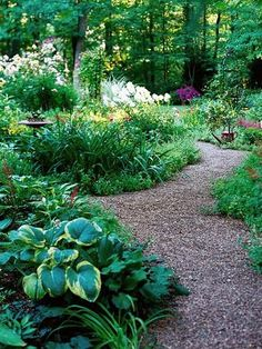 Gravel: budget friendly & functional Pros Inexpensive; good drainage; low-maintenance; won't disrupt plants' roots; can stand up to fairly heavy traffic. Cons Inorganic, so it doesn't improve soil; without the right border, gravel pieces can spill out into garden areas. May need to be weeded occasionally. Tip Use small, angular stones instead of rounded pebbles. They lock together for a more stable walking surface. #Gardenpaths