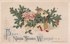 J. Winsch Signed 1912 New Year Postcard Germany Pig in Basket,Mushrooms,Pine,Two in Collectibles, Postcards, Holidays | eBay