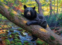 I admire the beauty of the universe ... Artist Mark Keathley .. Discussion on LiveInternet - Russian Service Online Diaries