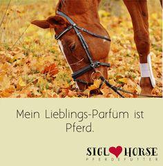 Mein Lieblings-Parfüm ist Pferd. #pferdehumor