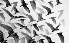 Download Wallpaper black and white birds digital art monochrome artwork -104432-8
