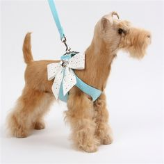 Tiffi's Gift Step-In Harness - Silver Stardust & Tail Bow Heart Dog Harness #pets