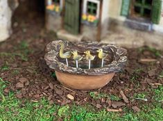 Fairy Garden Mallard Duck Pond, Miniature Garden Kit, Fairy Garden Mallard Duck Pond, Miniature Garden Kit, nice Hostinger Data Breach What Should You Know Ab. Fantasy Garden, Garden Art, Garden Ideas, Garden Pond, Miniature Zen Garden, Creative Christmas Gifts, Fairy Gifts, Fairy Garden Supplies, Garden Animals