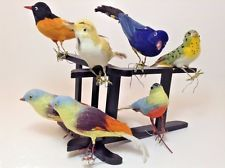 Vintage Lot (7)  FLOCKED SPUN COTTON FEATHER BIRDS CHRISTMAS ORNAMENTS