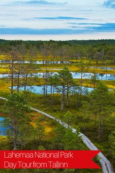 Discover the dense forest and picturesque coastline of Lahemaa National Park. It's home to many hidden treasures including a hidden captains' village, abandoned Soviet military remains and more. https://www.likealocalguide.com/tallinn/tours/lahemaa-national-park-day-tour-from-tallinn